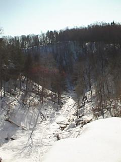 A winter view of Spencer Gorge